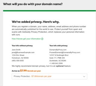 GoDaddy Private Registration